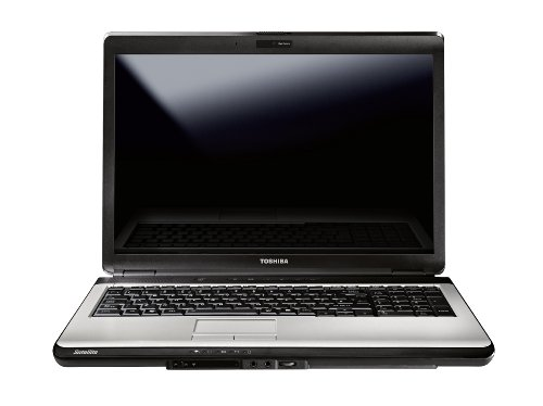 Toshiba Satellite L350-262 17 inch Laptop (Celeron T3000 1.8GHz, 2 GB RAM, 250 GB HDD, DVD SuperMulti Drive, WLAN, WebCam, Windows 7 Home Premium (Steel Grey/Silver)