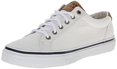sperry-top-sider-mens-striper-ltt-fashion-sneaker-white-11-m-us