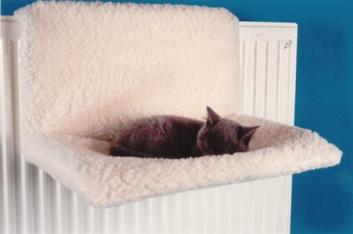 Cat Tree With Hammock Uk Webnuggetz Com