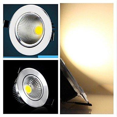 Rayshop - 5W 400-500Lm 3000-3500K Warm White Color Cob Led Panel Lights Led Ceiling Lights(85-265V)