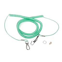 Random Color Parrot Bird Leash Kits Anti-bite Flying Training Rope for Cockatiel