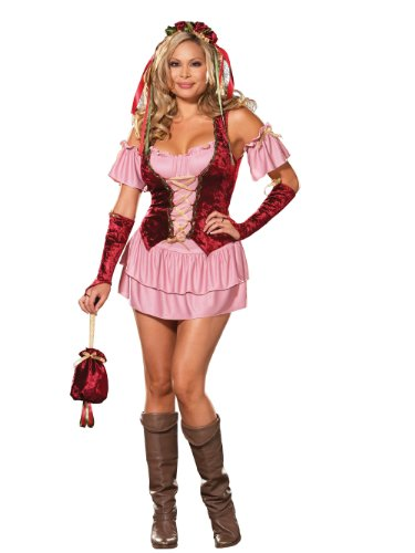 Plus Size Renaissance Costume Wench Costume Womens Sexy