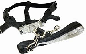 Buy Freedom No Pull Velvet Lined Dog Harness And Leash