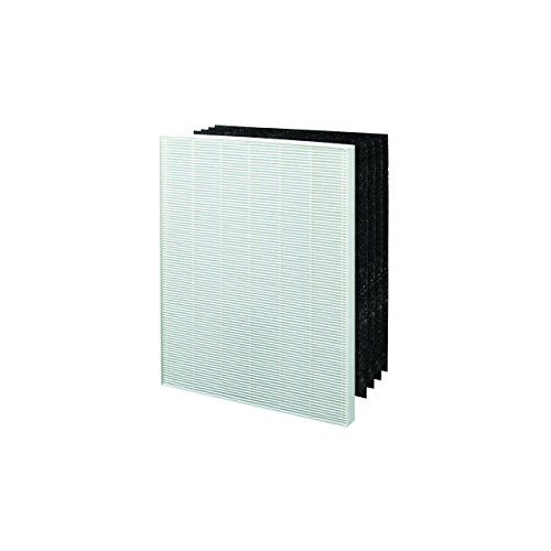 Winix Size 25 Replacement HEPA Filter Set for P450 Air Cleaner