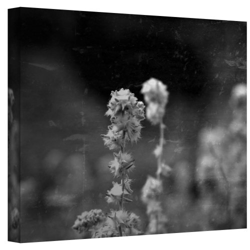 Art Wall Puff Wrapped Canvas Art by Mark Ross, 18 by 24-Inch