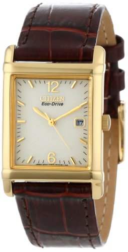 Citizen Men's BW0072-07P Eco-Drive Gold-Tone Leather Watch