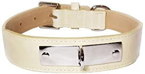 Brass Plate Engrave Tapered Dog Collar, Large Size 14-17, Bone