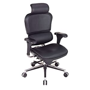 Amazon.com - Eurotech Ergohuman LE9ERG, Ergonomic Executive