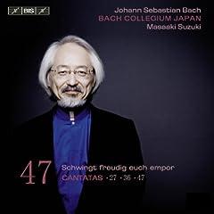 Schwingt freudig euch empor, BWV 36: Chorale: Zwingt die Saiten in Cythara (Chorus)