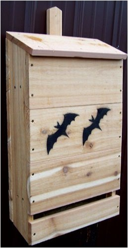 SP10H Features: -Wood nursery bat house. -Cedar construction.