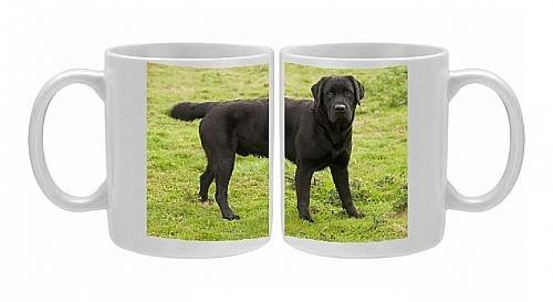 Photo Mug Of Dog - Black Labrador From Ardea Wildlife Pets front-625238