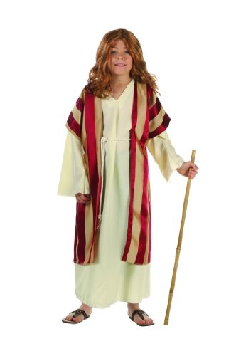 Child's Deluxe Moses Costume Size Medium (8-10)