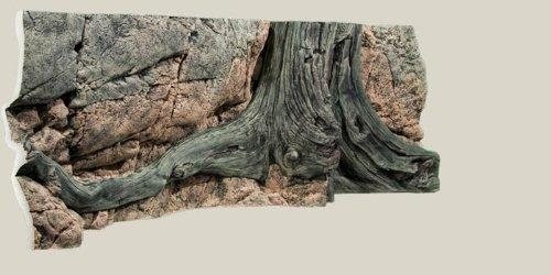 aquarienruckwand-amazonas-150x50cm