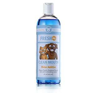 Fresh Dog Clean Mouth Water Additive for Dogs & Cats, 16 oz