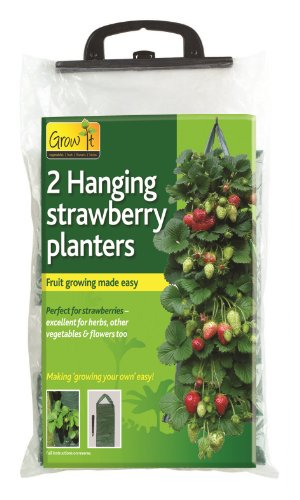 Hanging Strawberry Planter - Gardman Hang Down Strawberry Grower - Two Pack