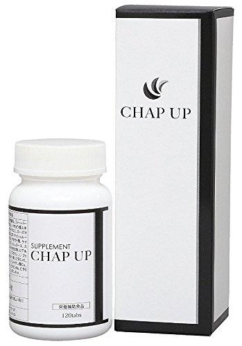 チャップアップ(CHAPUP)育毛剤(育毛ローション1本・サプリメント1箱)セット【医薬部外品】