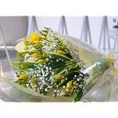 旅立ちのお花 フリージア 鮮やかな黄色とカスミ草の花束 フリージア ブーケ  卒業祝い 退職祝い エーデルワイス 花工房