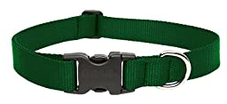LupinePet 1-Inch Green 16-28-Inch Adjustable Dog Collar for Large Dogs