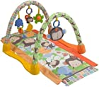 Fisher-Price My Little SnugaMonkey Kick & Crawl Gym.