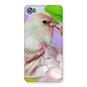 Spring Bird Back Case Cover for Micromax Canvas Fire 4 A107