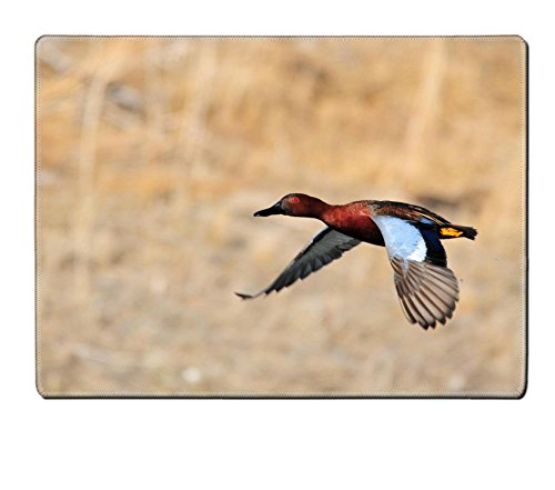 Luxlady Placemat Canada Geese Are Back Natural Rubber Material Image 26212355715