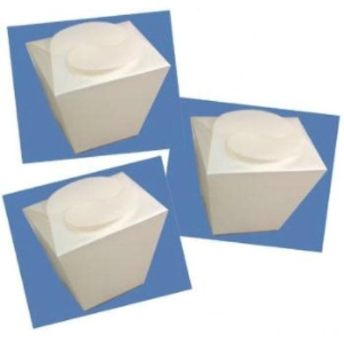 Frosted Takeout Box Case Pack 12 - 745982