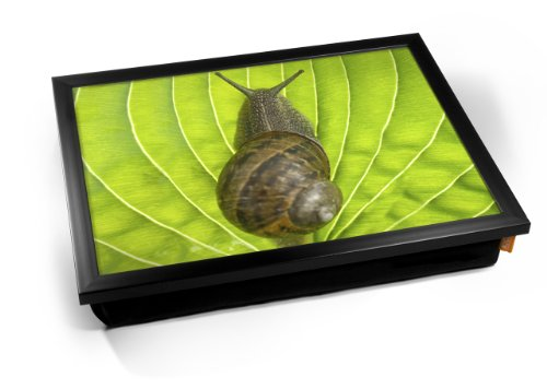 Snail Shell Animal Cushion Lap
