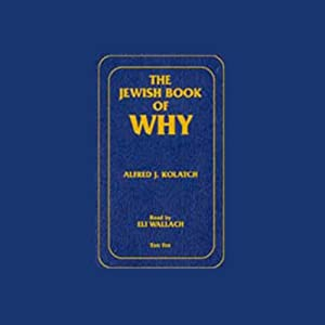 The Jewish Book of Why Audiobook
