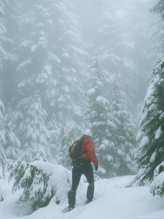 Young Woman Snowshoeing Through the Forest on a Snowy Winter Day
