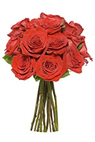 12 Long Stem Red Roses – Without Vase