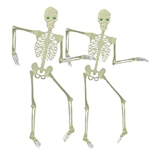 Mr. Light Set of 2 Medium Glow in the Dark Skeletons, 36in