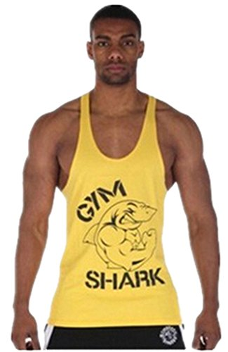 Gillbro Mens Stampa Canotte Cotone Stringer Bodybuilding Palestra Tank, B, M