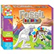 Anker Paint Your Own Fossil Dinosaurs