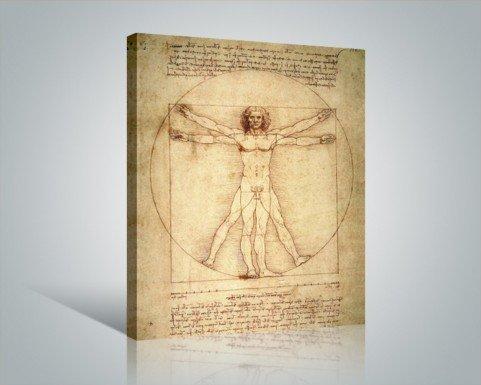 Posters: Leonardo Da Vinci Stretched Canvas Print - Vitruvian Man (20 X 16 Inches) front-607264