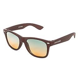 Danny Daze Wayfarer Unisex Sunglasses(D-801-C7|51|Brown)