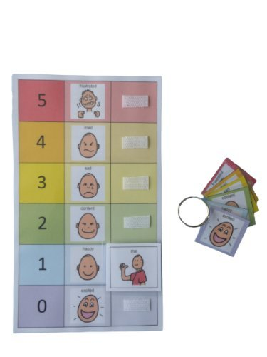 Autism Supplies And Developments PECS Feelings Board