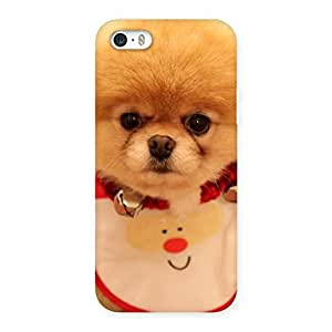 Ajay Enterprises Cutesty Pup Back Case Cover for iPhone SE