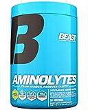 Beast Sports Nutrition, Aminolytes, Advanced Amino Matrix, Weight Loss Powder, Pineapple, 413 grams