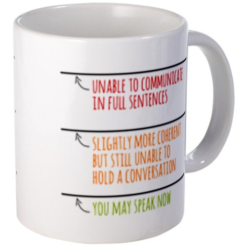 Cafepress You May Speak Now Mugs - Standard Multi-Color