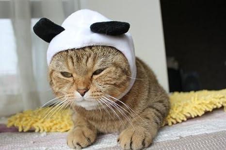 Panda Costume Cat Costume Hat Panda s