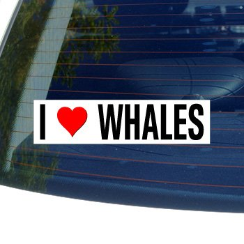 I Love Heart WHALES - Window Bumper Sticker