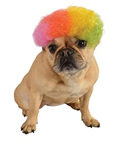 Rubies Costume Halloween Classics Collection Pet Costume, Medium to Large, Rainbow Afro Wig