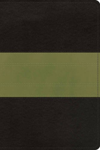 ESV Study Bible, Personal Size (TruTone, Charcoal/Sage, Trail Design) (Esv Personal Size Study Bible compare prices)