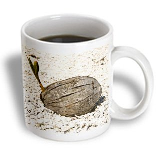 Danita Delimont - French Polynesia - French Polynesia, Huahine White Pebble Beach - Oc13 Jse0027 - Jan And Stoney Edwards - 11Oz Mug (Mug_85097_1)