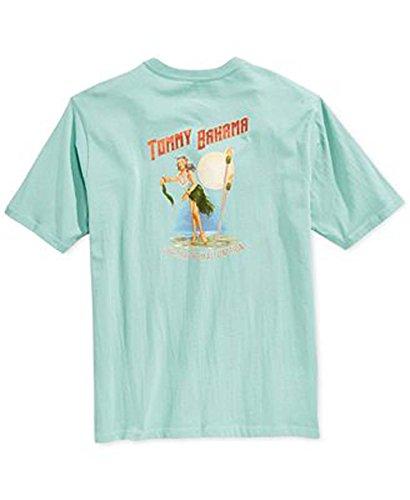 tommy-bahama-armadio-malfunzionamento-grande-dusty-aruba-maglietta