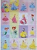 16 Princess Disney Postcard New Rare Liitle Mermaid,Snow White,Cinderella,Belle,Ariel,Sleeping Beauty