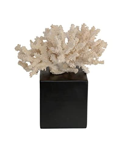 Three Hands Cream Decorative Coral Figurine