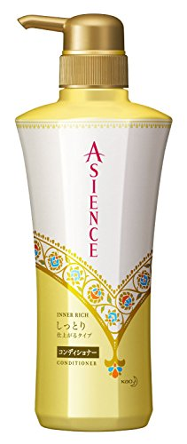 Asience Conditioner Moist Type Pomp 480ml