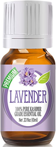 Lavender 100% Pure, Best Therapeutic (Kashmir) Grade Essential Oil for Aromatherapy - 10ml