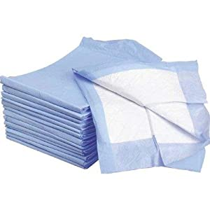 Wee Wee Pads and Housebreaking Disposable Absorbent Training Pads, 30*30 200 pcs/CASE